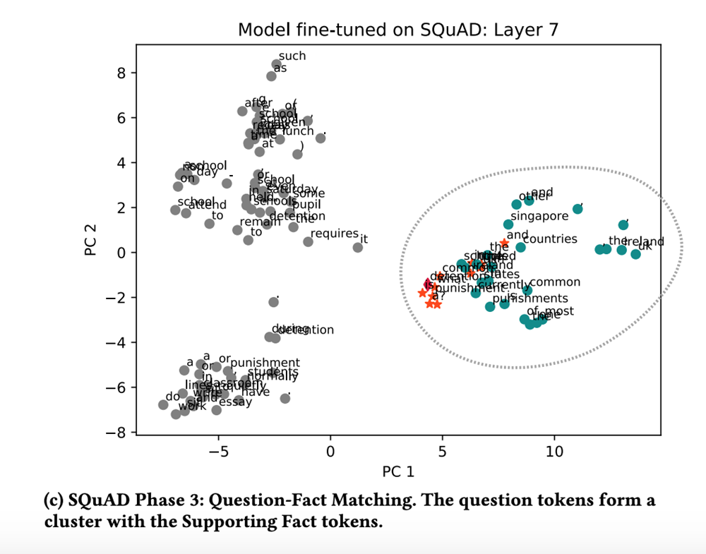 Model fine-tuned on SQuAD - Layer 7. Phase 3 the model is gathering facts to confirm the correct answer.