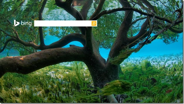 UnderwaterMangrove1366x768